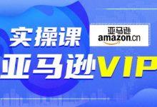 跨境电商Amazon运营零基础到高阶培训:亚马逊VIP系统实操精品课程