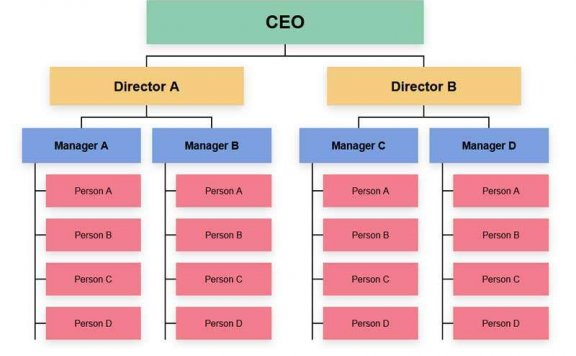 企业人员结构图表ui布局